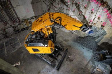 LiMAM 663903_Spinnengrafikbild R 950 Tunnel Stufe V-1_couleur_BK